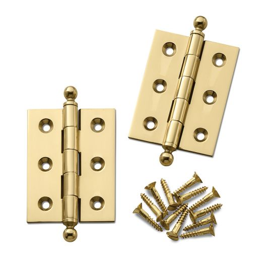 Ball Tip Extruded Hinges 2'' L x 1-1/2'' W