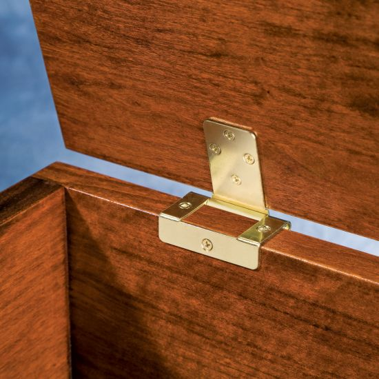 No-Mortise Chest Hinge