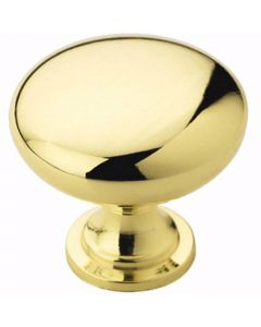Polished Brass Hardware Knob