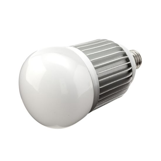 LED Big Bulbs