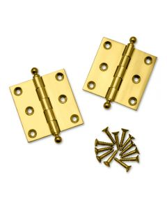 Ball Tip Extruded Hinges 2-1/2'' L x 2-1/2'' W