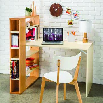 Modern Shelf Desk