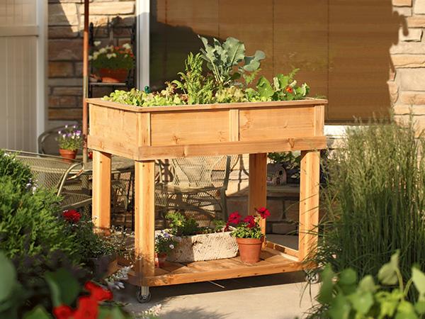 garden cart on patio