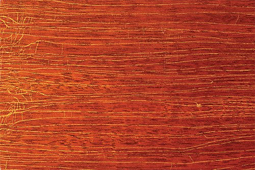 Lacquer finish damaged by wood movement caused by weather changes