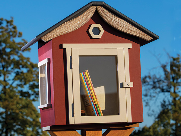 Close-up of completed lending library project