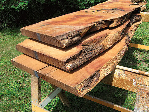 Collection of live edge mesquite lumber pieces
