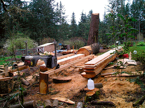 Setting up a saw mill at a lumber cutting site