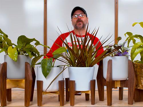 David Picciuto displays several variations of plant stands