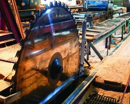 sawmill saw